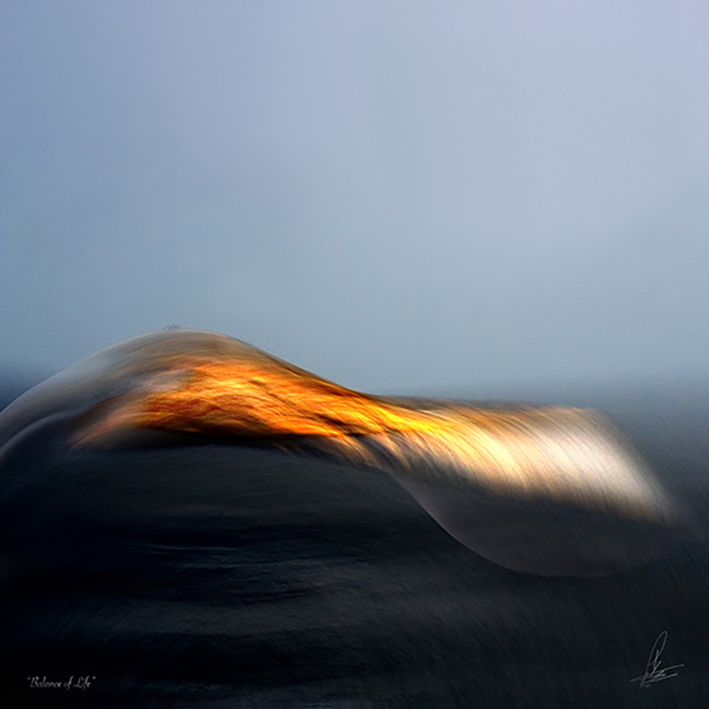 Balance of Life Limited Photographic art by Loek van Walsem BALANCE OF LIFE Our ardent life with imminent choice between light or dark encased with and driven by sex