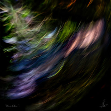 WAVES OF LOVE limited Photographic art by Loek van Walsem Darkness differs where love glides